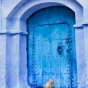 morocco-chefchaouen-blue-city-nick-saglimbeni-cat-in-doorway